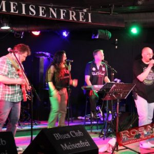 Meisenfrei 2013